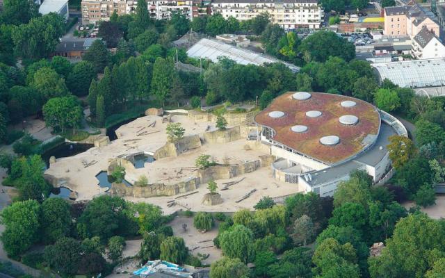 Le parc des éléphants au zoo de Cologne, 26 juillet 2010 (Crédit : CC BY-SA 2.0/Neuwieser/Rolf H.)