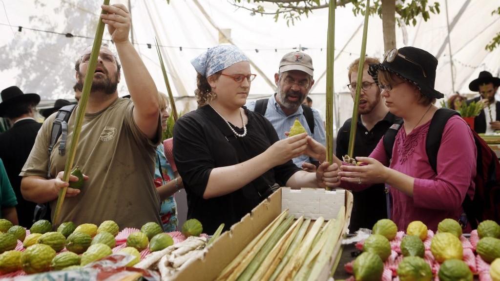 Des clients examinent les branches de palmier et les citrons - connus également sous le nom de lulav et d'etrog - pour y trouver des imperfections au marché à quatre espèces de Jérusalem le 16 septembre 2013 (Crédit : Miriam Alster/Flash90)
