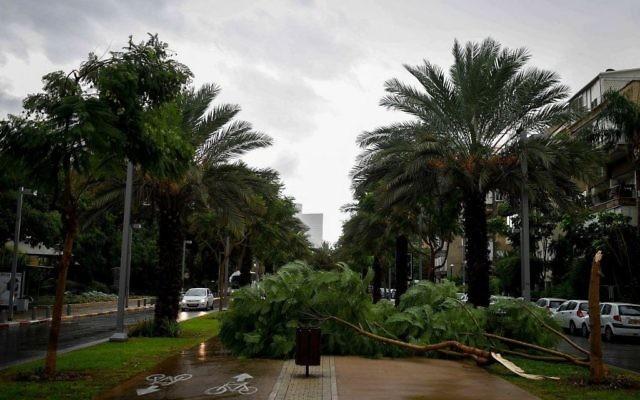 Le boulevard Rothschild de Tel Aviv après un orage, en octobre 2015. Illustration. (Crédit : Ben Kelmer/Flash90)