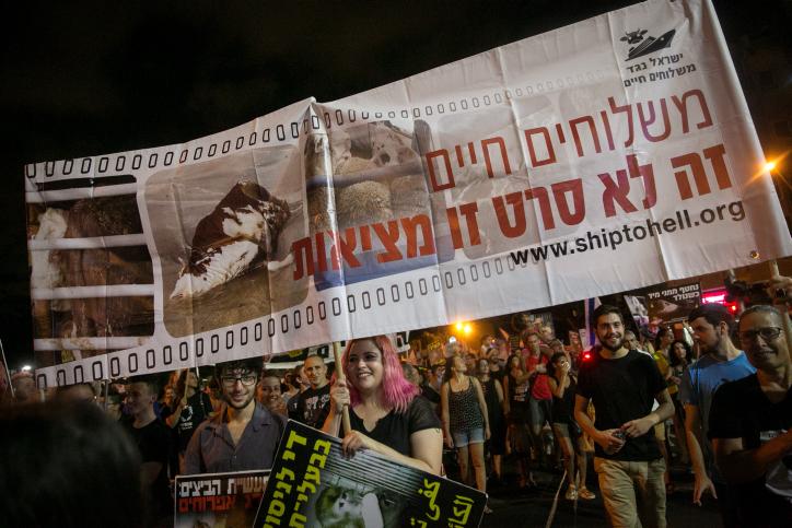 Manifestation de défense des droits des animaux sur la place Rabin de Tel Aviv, le 9 septembre 2017. (Crédit : Miriam Alster/Flash90)