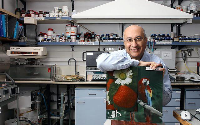 Le professeur Shlomo Magdassi de l'institut Casali de chimie appliquée à la faculté des sciences de l'université Hébraïque de Jérusalem (Crédit : Nati Shohat/Flash90)