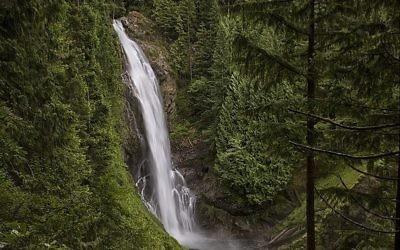 Le parc de Wallace Falls, dans l'état de Washington, le 3 juillet 2014. Illustration. (Crédit :  Steven Pavlov/CC BY-SA/Wikimedia commons)