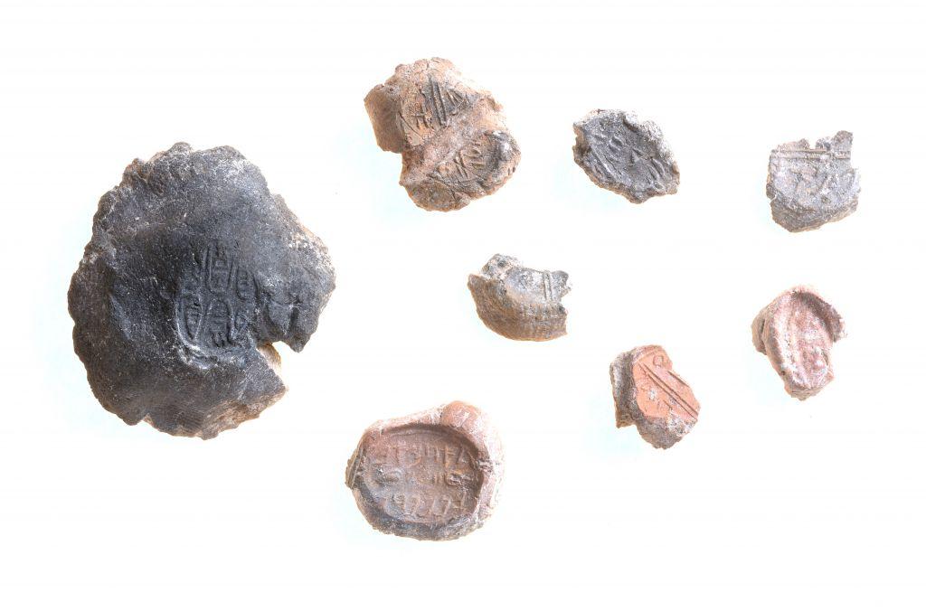 Un échantillon de sceaux. (Crédit : Clara Amit, Antiquities Authority)