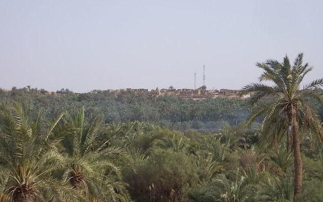 L'oasis de Bahariya (Crédit : Neil Carey/Wikimedia commons/Flicker/cc by sa 3.0)