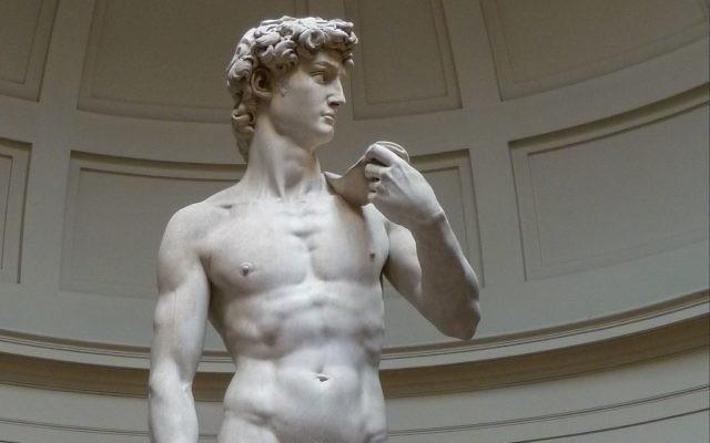 Le David de Michel-Ange à la Galerie de l'Académie de Florence. (Crédit : Jörg Bittner Unna/CC BY/WikiCommons)
