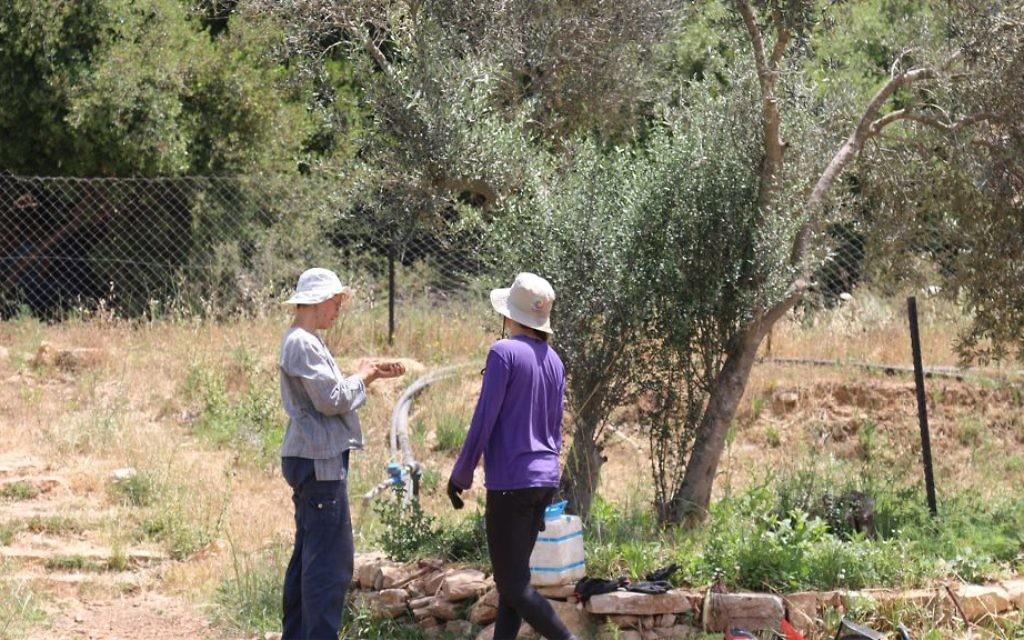 La ferme Kaima proche de Jérusalem. (Crédit : Shmuel Bar-Am)