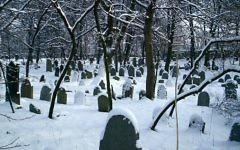 Le cimetière juif de Chrzanow, en Pologne. (Crédit : Wikimedia Commons)