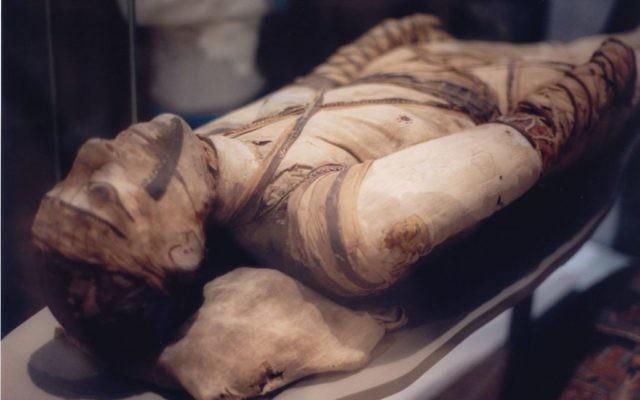 Photo d'illustration d'une momie au musée britannique de Londres (Crédit : CC BY-SA 3.0, Klafubra, Wikipedia)