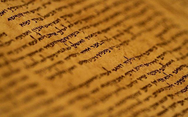 Un manuscrit de la collection des manuscrits de la mer Morte exposé au Musée d'Israël à Jérusalem le 26 septembre 2011 (Miriam Alster / Flash90)