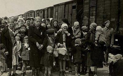 """A Auschwitz-Birkenau, en mai 1944, les Juifs hongrois arrivent dans des wagons à bestiaux et se préparent pour la """"sélection"""" dirigée par les SS. (Auschwitz Album)"""