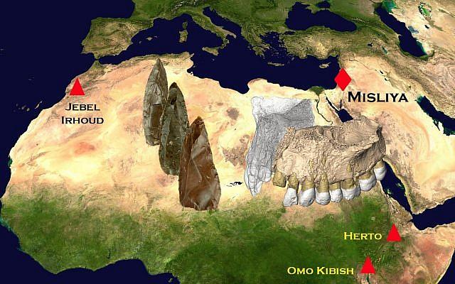 Les sites où ont été trouvés les premiers fossiles humains modernes en Afrique et au Moyen-Orient (Crédit : Rolf Quam, Binghamton University, USA/NASA image)