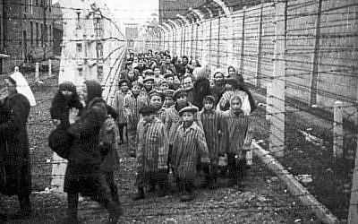 Libération d'enfants d'Auschwitz-Birkenau, avec des travailleuses humanitaires adultes qui ont été pixelisées dans le magazine Mishpacha, numéro du 24 janvier 2018. (HistClo. com)