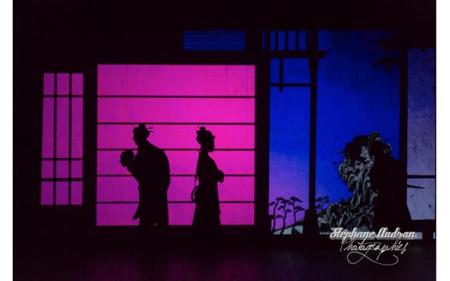 """Ombres chinoises du décor du spectacle """"Prince et princesses"""" qui se produira en Israël les 25 et 26 février (Crédit: Stéphane Audran)"""
