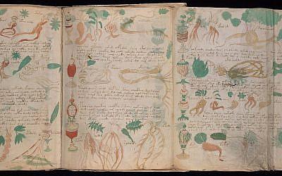 Pages extraites de MS 408 de Neinecke, ou manuscrit de Voynich. (Crédit : bibliothèque des livres et manuscrits rares Beinecke)