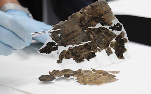 Conservation des parchemins dans les laboratoires de l'Autorité israélienne des antiquités à Jérusalem (Shai Halevi, Autorité israélienne des antiquités)