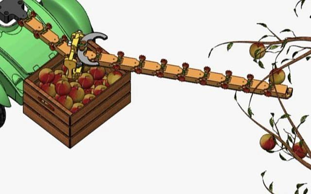 Des chercheurs de l'Université Ben Gourion du Néguev ont mis au point un bras robotisé léger et peu coûteux qui, selon eux, peut être utilisé par les agriculteurs pour cueillir des fruits ou dans l'espace pour réparer des satellites défectueux (Capture d'écran YouTube)