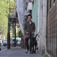 Illustration : Une femme aveugle avec son chien (Capture d'écran : YouTube)