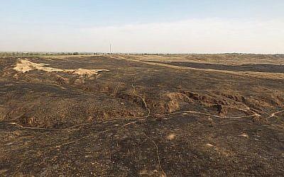 Les images de drone montrent les destructions massives causées par les cerfs-volants incendiaires dans la réserve naturelle de Beeri, adjacente à Gaza. (Crédit : DRONEIMAGEBANK)