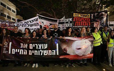 Des manifestants à Tel Aviv contre les envois vivants d'animaux destinés à l'engraissement et à l'abattage en Israël, le 28 avril 2018. (Adi Avikzer)