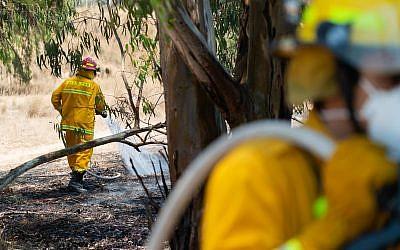 Des pompiers éteignent un incendie dans la forêt de Beeri, le 6 juin 2018. (Luke Tress/Times of Israel)