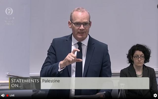 Le ministre irlandais des Affaires étrangères Simon Coveney pendant un débat au Sénat irlandais sur une loi interdisant le commerce de bien provenant de colonies, le 11 juillet 2018 (Crédit : capture d'écran oireachtas.ie)