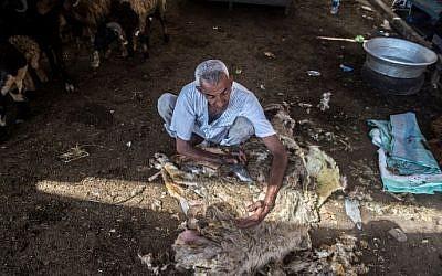 Illustration : Un Egyptien tond son mouton avant de les vendre dans un marché du Caire, à l'approche de l'Aid al-Adha, le16 août 2018. (Crédit : AFP / Khaled DESOUKI)
