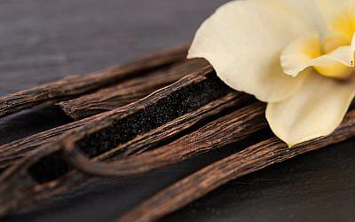 Photo d'illustration de gousses de vanille (Crédit : joannawnuk; iStock by Getty Images)