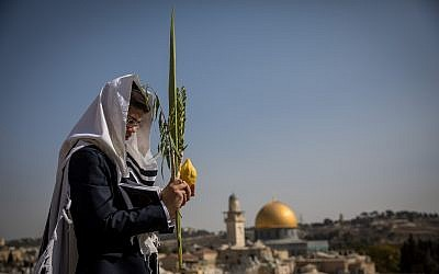 Illustration: un fidèle juif tient les 4 espèces pendant la fête de Soukkot au mur Occidental, dans la Vieille Ville de Jérusalem, le 8 octobre 217. (Crédit : Yonatan Sindel/Flash90)