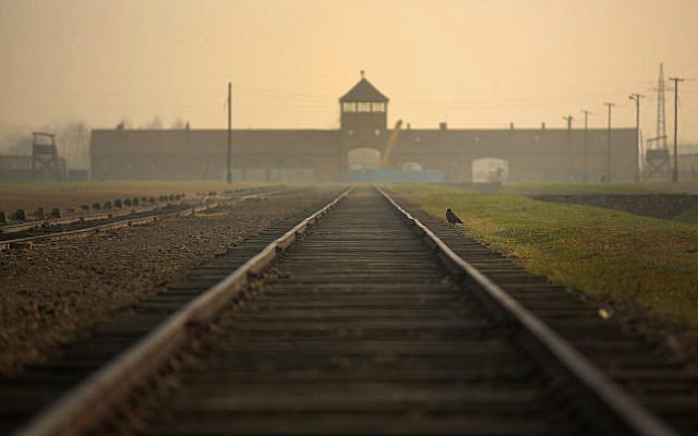 """Les rails de chemin de fer menant aux """"portes de la mort"""" de triste mémoire au camp d'extermination d'Auschwitz II Birkenau, le 13 novembre 2014 à Oswiecim, en Pologne (Crédit : Christopher Furlong/Getty Images/via JTA)"""