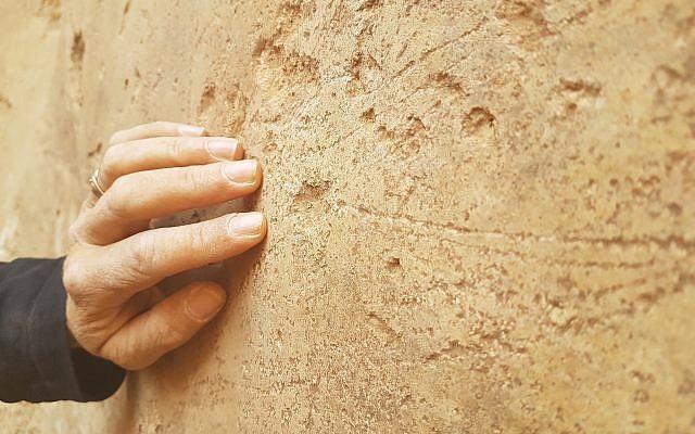 Des navires et des formes animales gravées découvertes durant une fouille archéologique par l'Autorité israélienne des antiquités à Beer Sheva pendant l'été 2018 (Crédit : Davida Eisenberg-Degen/IAA)