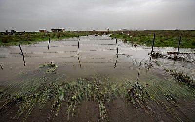 Un ruisseau déborde après les pluies sur le plateau du Golan, le 14 janvier 2019 (Crédit:  Maor Kinsbursky/Flash90)