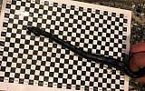 Les douanes allemandes ont trouvé ce boa de 40 centimètres de longueur dans le pantalon d'un passager lors de l'embarquement à bord d'un avion vers Israël, en décembre 2018 (Autorisation/ Douanes de Postdam)