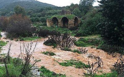 La rivière Zalmon, dans le nord d'Israël, déborde sous la pluie, le 9 janvier 2019 (Autorisation :  Nadav Bartan/Autorité de la nature et des parcs)