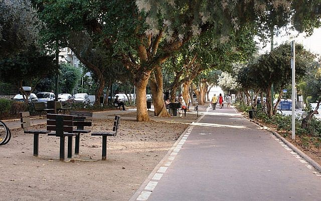 Plusieurs espèces d'arbres bordent le boulevard Ben Gurion à Tel Aviv. (Shmuel Bar-Am)