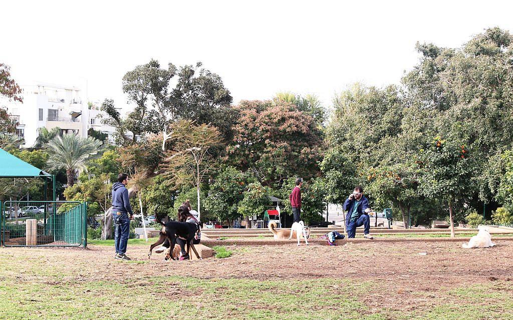 Le parc Shlomo Hamelech à Tel Aviv. (Shmuel Bar-Am)