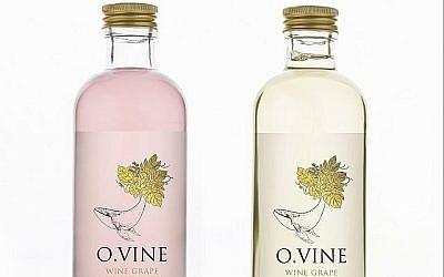 O.Vine , une eau vinifiée sans alcool et sans sucre, qui est produite à partir de marc et de graines de raisin par l'entreprise Wine Water et Practical Innovation. (Photo personnelle).