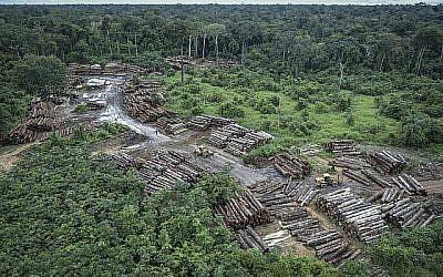 Cette photo du 8 mai 2018 publiée par l'Institut brésilien de l'environnement et des ressources naturelles renouvelables (Ibama) montre une zone illégalement déboisée sur des terres indigènes Pirititi alors que des agents Ibama inspectent l'état de Roraima dans le bassin amazonien du Brésil. (Felipe Werneck/Ibama via AP)