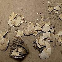 Les coquilles d'oeufs de 2600 ans découvertes dans la cité de David par la docteure Eilat Mazar. (Université de Bar-Ilan)