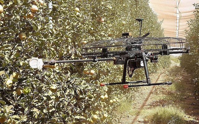Tevel Aerobotics Technologies a développé un drone pour aider les agriculteurs à cueillir les fruits (Autorisation)