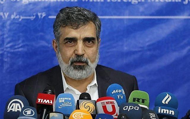 Behrouz Kamalvandi, porte-parole de l'Organisation iranienne de l'énergie atomique (AEOI), répond à la presse à Téhéran, le 17 juillet 2018. (Photo AFP / ATTA KENARE)