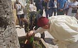 A l'initiative du collectif associatif de jeunes «Morocco L'Ghedd», des oliviers ont été plantés dans plusieurs villes ce 17 mai dans le cadre du projet «Plantons la Fraternité». (Crédit photo : Ahmed Ghayat / Facebook)
