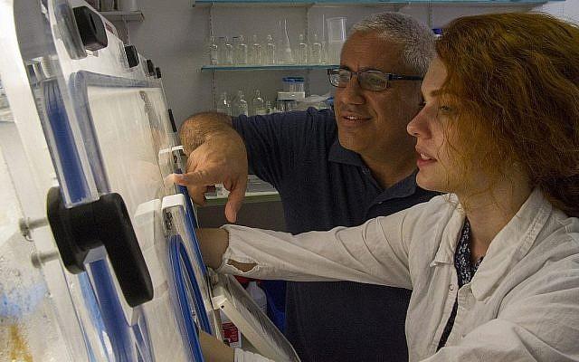 Le Dr. Ronen Hazan, à gauche, teste un échantillon dans les laboratoires du centre médical Hadassah et à l'université hébraïque de l'Ecole Jérusalem de médecine dentaire (Yaniv Berman/ Crédit: Autorité des Antiquités d'Israël)