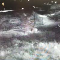 Deux suspects entrés dans l'implantation de Migdalim après avoir ouvert une brèche dans la clôture de sécurité (Capture d'écran)