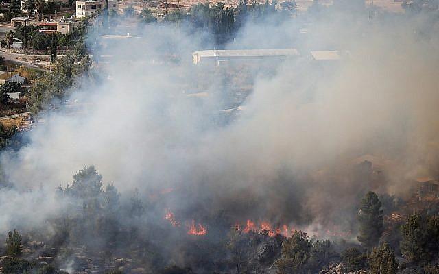 Un incendie aux abords de la communauté agricole d'Even Sapir, à l'ouest de Jérusalem, le 4 juin 2019 (Crédit : Noam Revkin Fenton/Flash90)