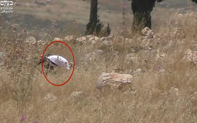 Capture d'écran d'une vidéo qui montrerait un soldat israélien en permission mettant le feu à un champ palestinien dans le nord de la Cisjordanie, le 17 mai 2019 (Capture d'écran : BTselem)