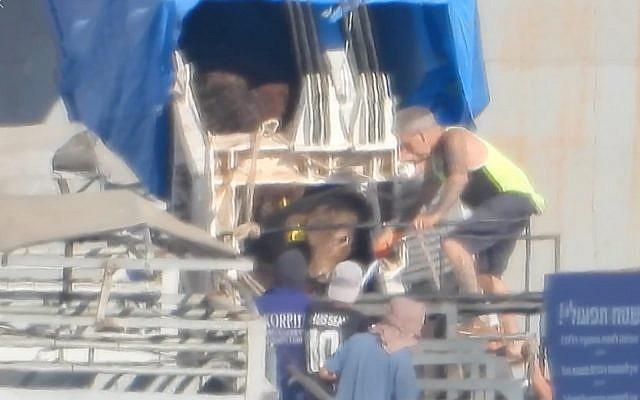 Les images publiées le 13 juin 2019 par le groupe Israël contre les transports d'animaux vivants montre des employés en train de faire sortir les animaux du bateau australien grâce à des aiguillons qui transmettent des chocs électriques, à Eilat. (Capture d'écran : Facebook)