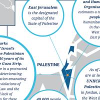 Une capture d'écran du site internet de l'Immigration en Nouvelle Zélande mentionne la Palestine au lieu d'Israël sur une carte. (Immigration Nouvelle Zélande via JTA)