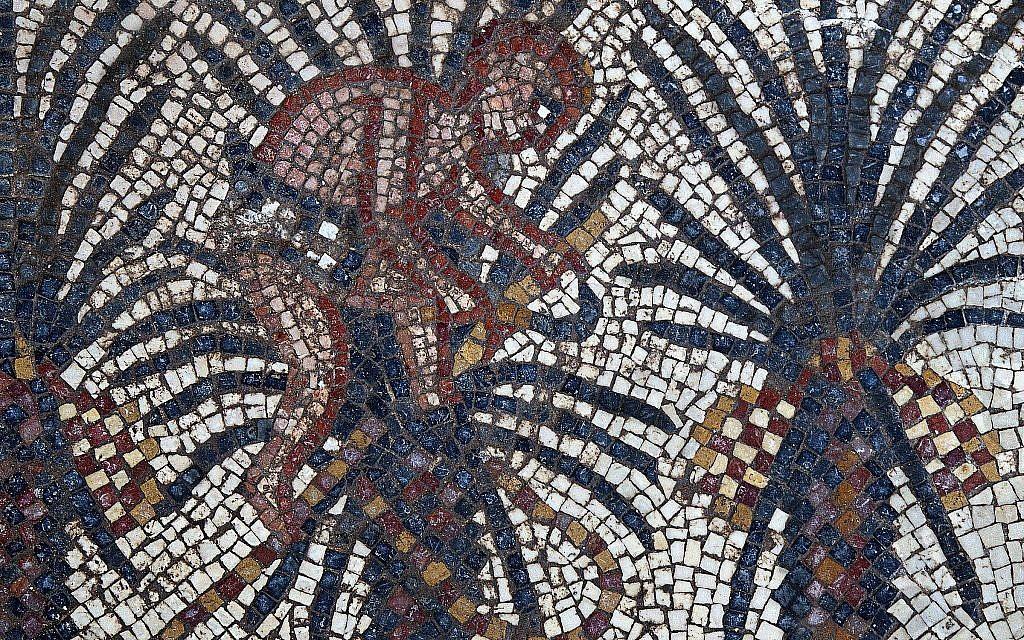 Détail d'une mosaïque représentant le récit biblique d'Elim, dans le livre de l'Exode, 15:27, découverte en 2019 durant des fouilles dans une synagogue de 1600 ans à Huqoq, un travail dirigé par la professeure de l'UNC-Chapel Hill Jodi Magness (Crédit : Jim Haberman, Autorisation : UNC-Chapel Hill)