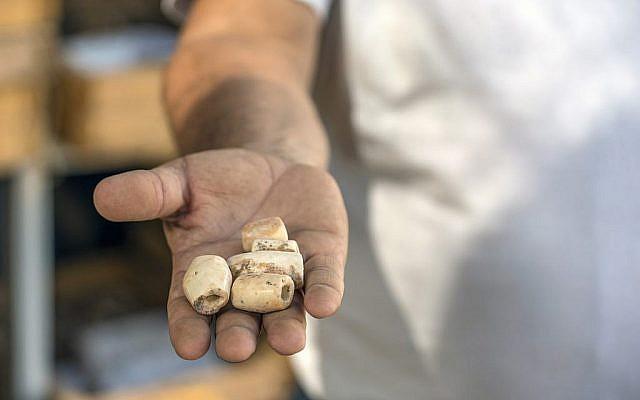 Morceaux de collier découverts sur le site archéologique de Motza, près de Jérusalem. (Yaniv Berman, Autorité israélienne des Antiquités)