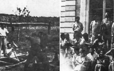 Les « compagnons » du kibboutz Migdal au travail dans les champs et rassemblés sur les marches du château de La Borde. (Crédit photo : Ghetto Fighters House)
